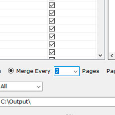 Customize Page Amount on Each Merged Page